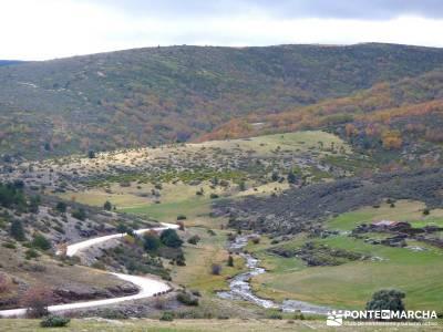 Hayedo Tejera Negra - Fiesta Almudena;sierra de grazalema hiking ropa de montaña